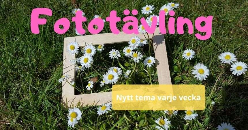 Fotoram ligger bland blommor och texten Fototävling Nytt tema varje vecka